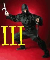 Thumbnail Kung Fu: Ninja Death III